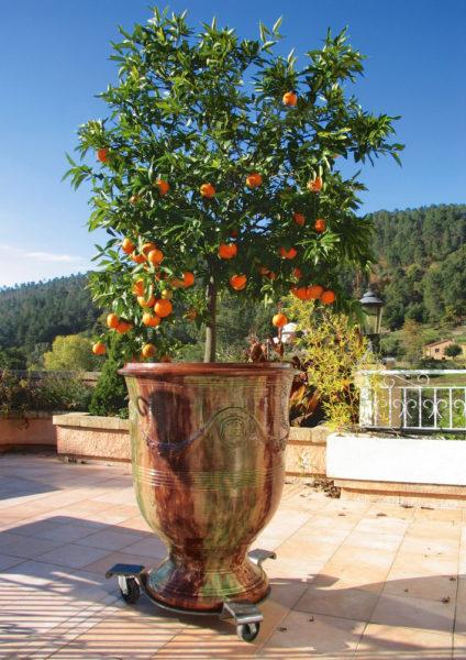 Vase d'Anduze sur notre terrasse panoramique