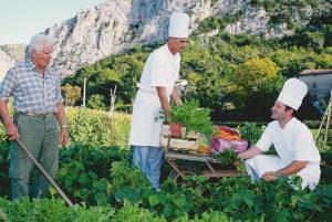 La production de notre potager en direction de notre cuisine