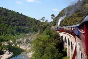 Le Train à Vapeur des Cévennes vous propose de découvrir de superbes paysages entre Anduze et Saint-Jean du Gard