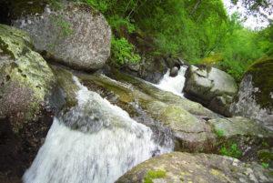 En saison, la rivière du Gardon offre, dans un environnement préservé, de nombreux plaisirs aux pêcheurs comme aux baigneurs