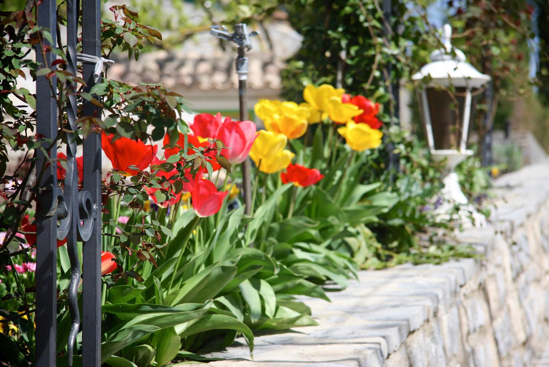 La Porte des Cévennes - Dans les jardins